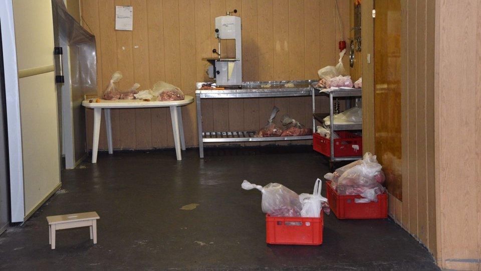 Zerlegte Kuh In Essener Hinterhof Diese Konsequenzen Drohen